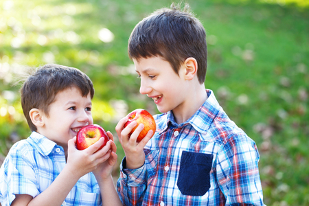 brothers: Happy little caucasian brothers eating apple outdoor Stock Photo