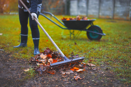 Woman raking leaves on cold autumn day outdoors