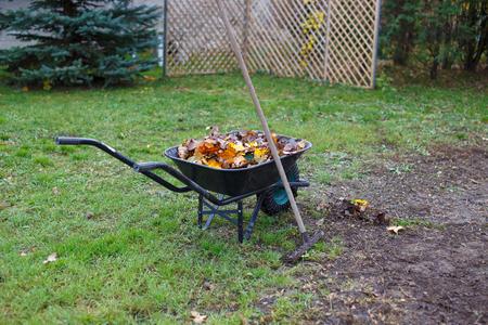 Rake, wheelbarrow and leaves at autumn outdoors Stock Photo