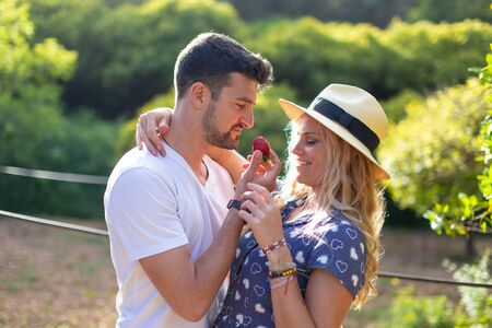 Young man in love feeding girlfriend with strawberry in picnic outdoors Imagens
