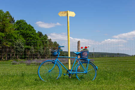 Old blue rural country bicycle on meadow at countryside