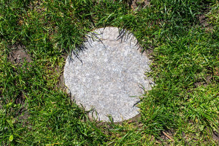 One round stepping stone in grass at backyard