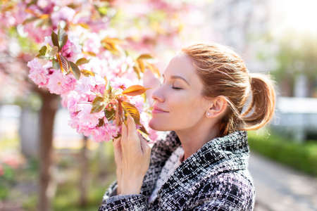 Young redhead woman smelling cherry tree blossom during Sakura, profile view