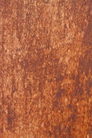 emigranti: Legno background.Timber Vecchia con gli emigrati di et�. Archivio Fotografico