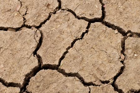 Cracked soil ground background. photo
