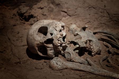 human bones: grave burial skeleton human bones Stock Photo