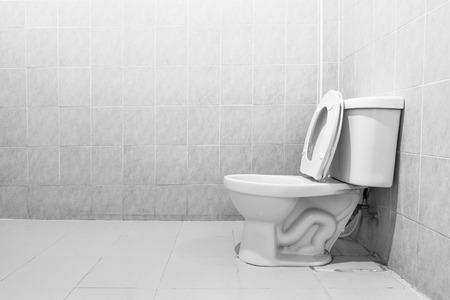 flushing: White toilet bowl in a bathroom
