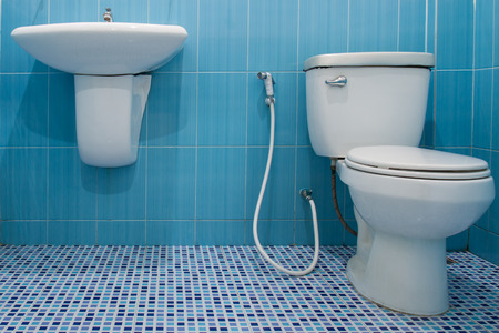 latrine: Toilet  in a building interior
