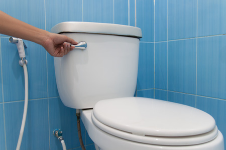 toilet with a flush. Press and flush. Stock Photo