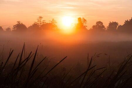faintly visible: Sunrise and fog