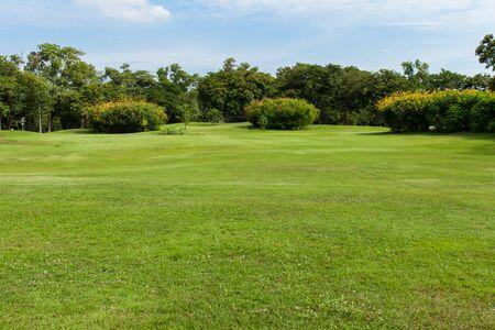 green grass field in public park Stock Photo