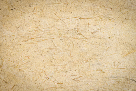 Mulberry paper or handmade paper texture
