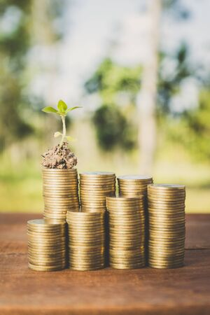 csr: plant growing out of coins ,concept of corporate social responsibility (csr)