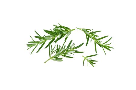 Fresh green rosemary isolated on a white background. Фото со стока