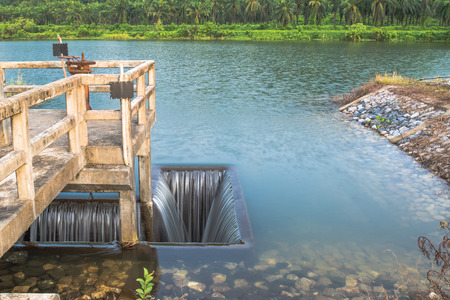 Ditch inlet of weir water gate infrastructure.Overflow from lake to palm plantation and irrigation