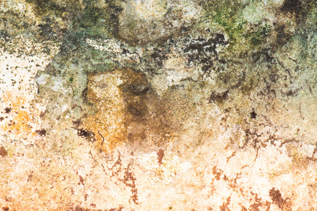 wall texture: Old wall. Grunge wall texture Stock Photo