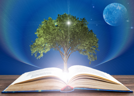 from the expanded book grows the tree of knowledge. Education concept Stok Fotoğraf