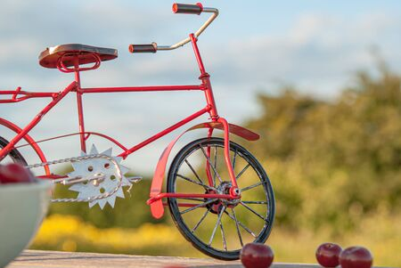 red bike on the background of nature and berries