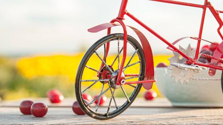red bike on the background of nature and cherry