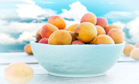 ripe apricots in a bowl on a beautiful background of the summer landscape