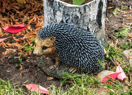 hedgehog near a rotten stump on the background of fallen leaves Stok Fotoğraf
