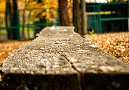 Old decrepit bench in city park in autumn afternoon retro