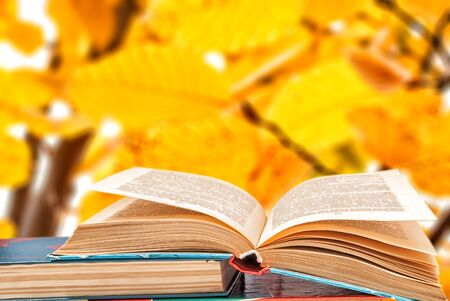 books on a background of autumn yellow leaves