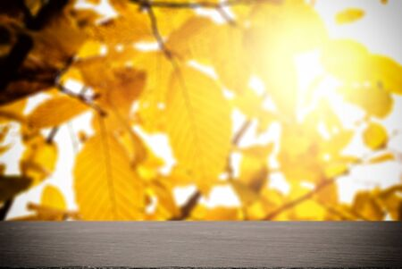 table top against the background of autumn leaves Stok Fotoğraf