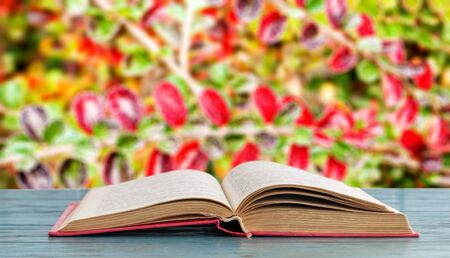 Open book on a wooden surface on a background of shrubs