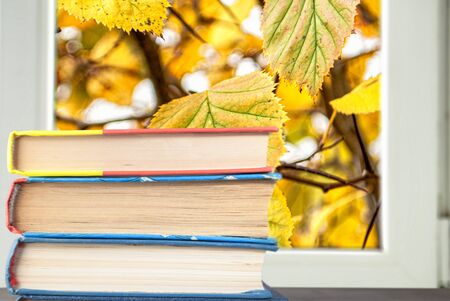books on the background of autumn yellow leaves behind the window frame for the background