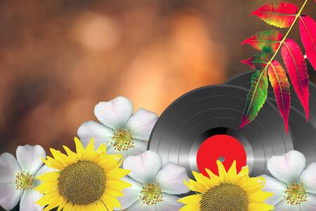 Vinyl discs, flowers and leaves. for cards and backgrounds 版權商用圖片