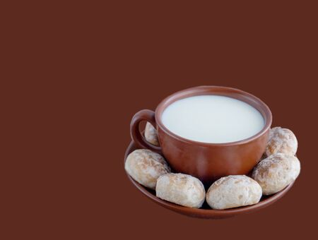 Cup with milk and vanilla gingerbread cookies on a plate