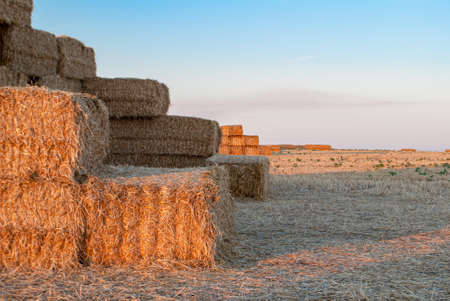 stacks of straw stacked on top of each other in the form of a castle at sunset 版權商用圖片