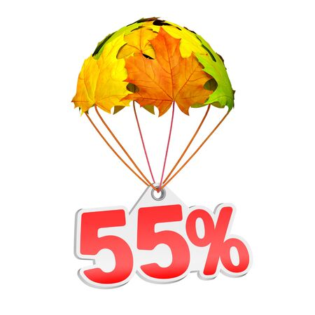 Paper price tag label as fifty five percent (55%) go down on a parachute in the form of vibrant maple leaves on white background. Autumn sale shopping season or advertising announcement Stockfoto