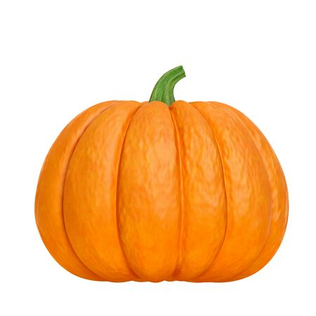 Organic ripe orange pumpkin with green stem isolated on white background (front view). Design element or decoration object for autumn festival, Halloween, Thanksgiving themes. 3d illustration