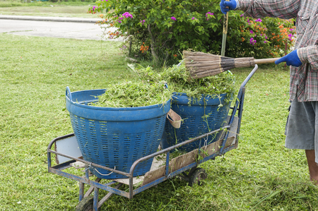 raking: cleaning the lawn and raking up grass clippings after mowing with a pile of grass and rake leaning on a plastic bin Stock Photo