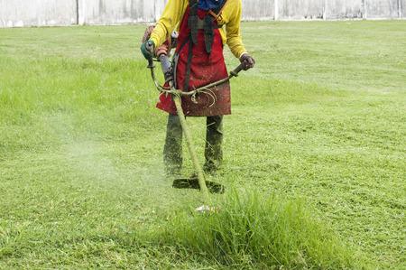 mows: man mows the grass trimmer