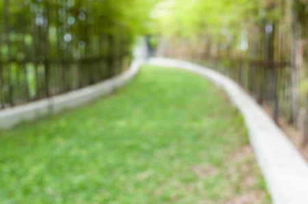 both sides: Blurred pathway with green grass on both sides by bamboo