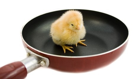 chick on frying pan
