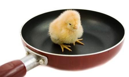 steel pan: de pollo en la sart�n