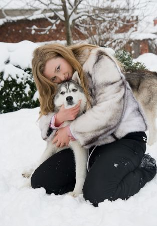 dog sled: husky with girl Stock Photo