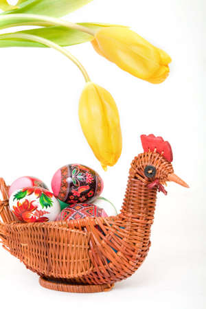 easter eggs in basket with tulips isolated on white photo