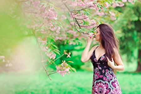 portrait of young beautiful woman in sakura tree photo