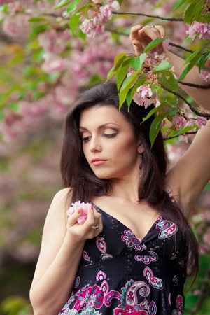 portrait of young beautiful woman in sakura tree photo