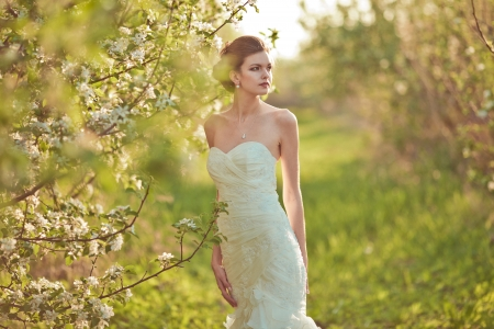 Portrait of a beautiful brunette bride photo