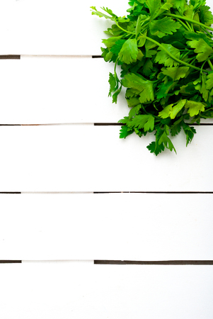 potherb: Fresh green parsley on white wooden background