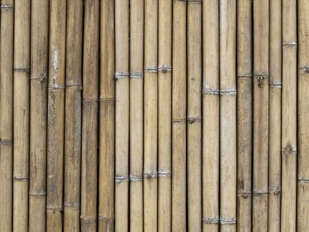 Bamboo Slats Bound Together