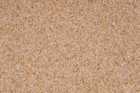 Coarse sand background texture