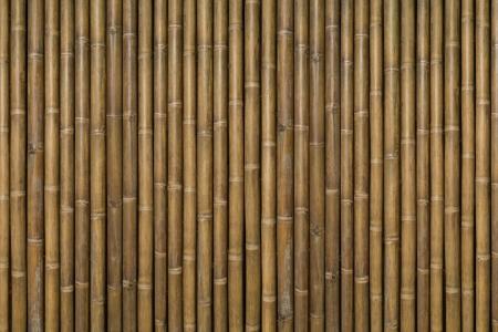 Wood Bamboo Background