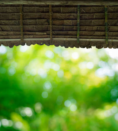 view to leaf green from straw roof hut Stock Photo